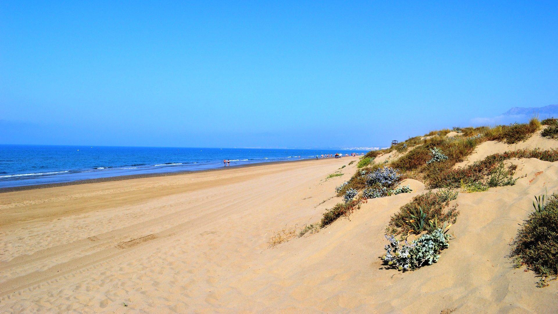 Hollwood Beach Property Sell
